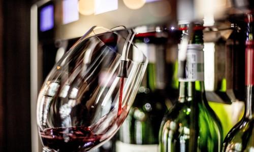 Salut Wines
